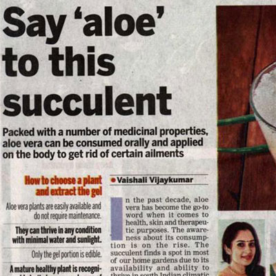 Say aloe to this succulent - The New Indian Express News