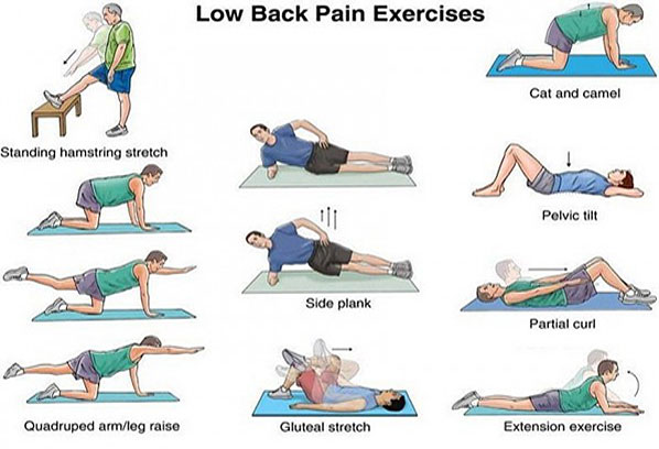 Image result for How to Prevent Lower Back Pain?